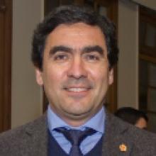 Gustavo Birke Riquelme